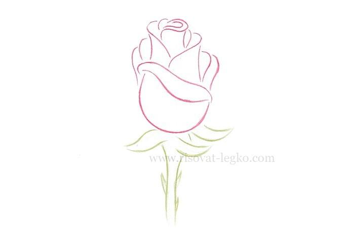 02.Как рисовать розу поэтапно: урок для начинающих