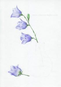04.Как нарисовать натюрморт карандашом поэтапно