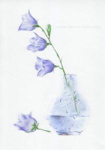 06.Как нарисовать натюрморт карандашом поэтапно