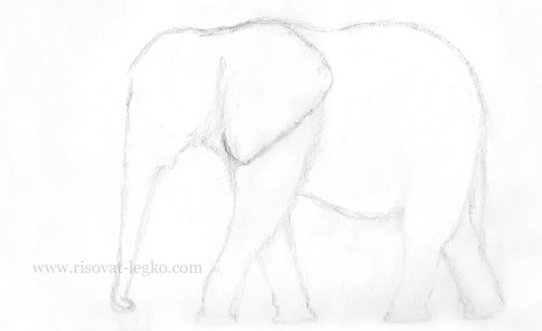 02.Как нарисовать слона карандашом поэтапно