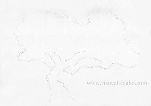 02.Как нарисовать дерево карандашом поэтапно