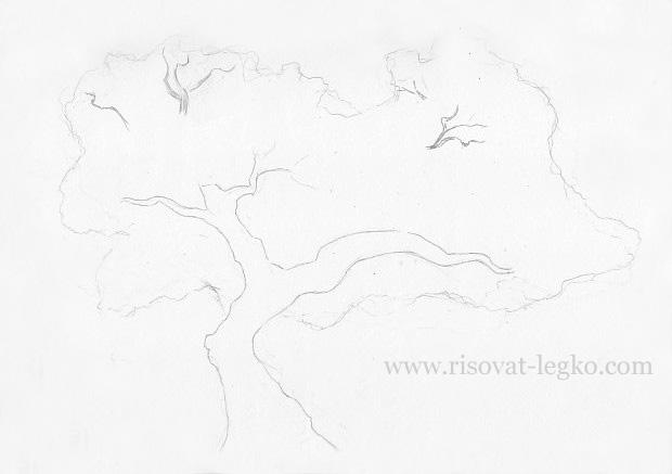 03.Как нарисовать дерево карандашом поэтапно