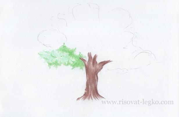 04.Как рисовать дерево поэтапно цветными карандашами