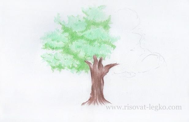 05.Как рисовать дерево поэтапно цветными карандашами