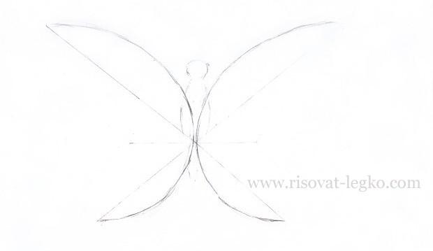 04.Как нарисовать бабочку поэтапно карандашом