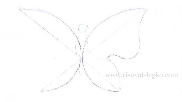 05.Как нарисовать бабочку поэтапно карандашом