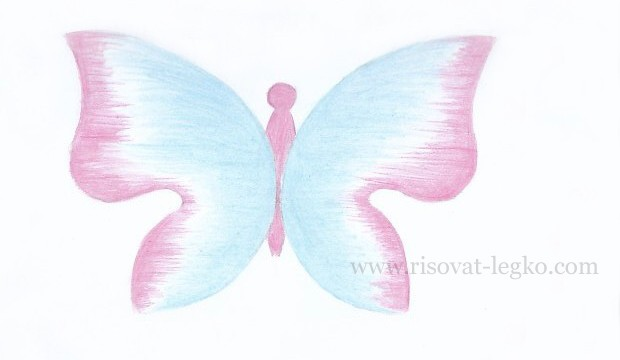 09.Как нарисовать бабочку поэтапно карандашом
