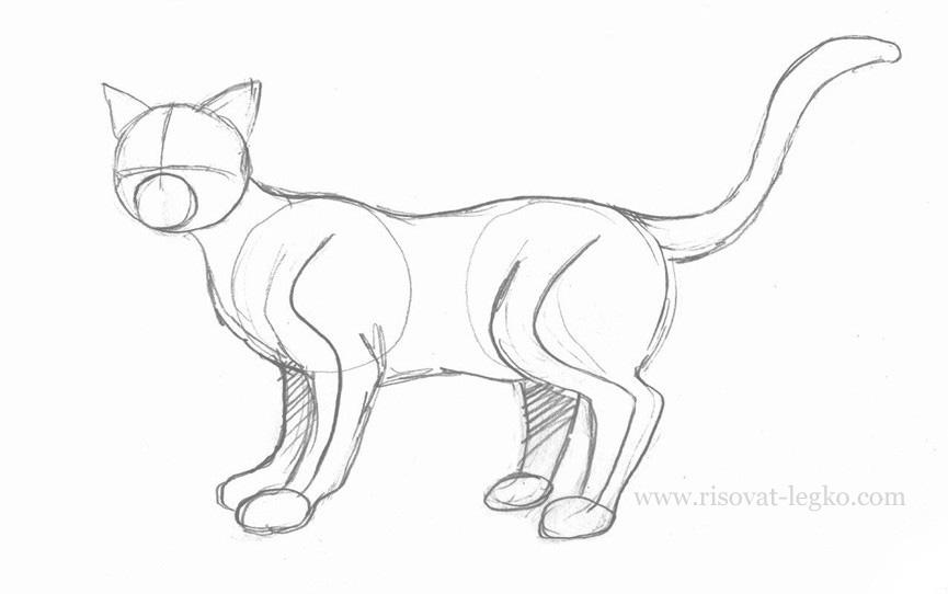 04.Как нарисовать кота поэтапно простым карандашом