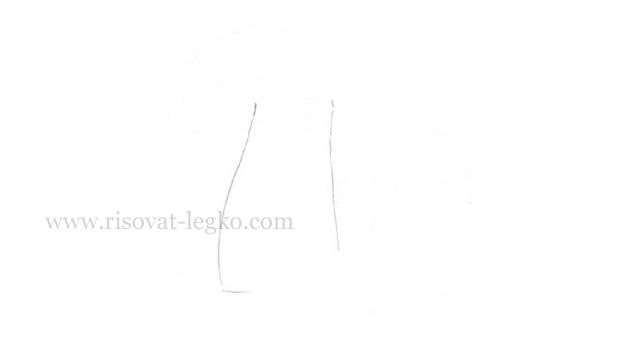 02.Как нарисовать грибы поэтапно карандашом