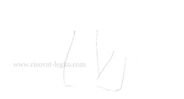 03.Как нарисовать грибы поэтапно карандашом