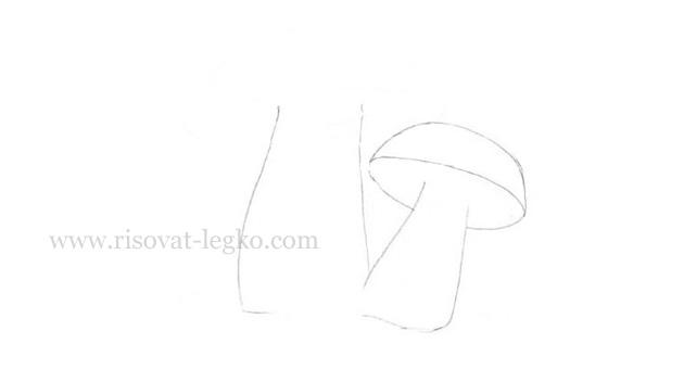 05.Как нарисовать грибы поэтапно карандашом