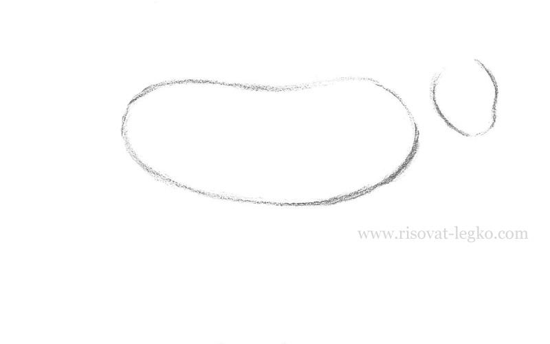 02.Как нарисовать кошку поэтапно карандашом