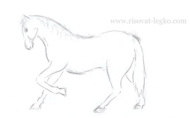 10.Как нарисовать лошадь поэтапно карандашом