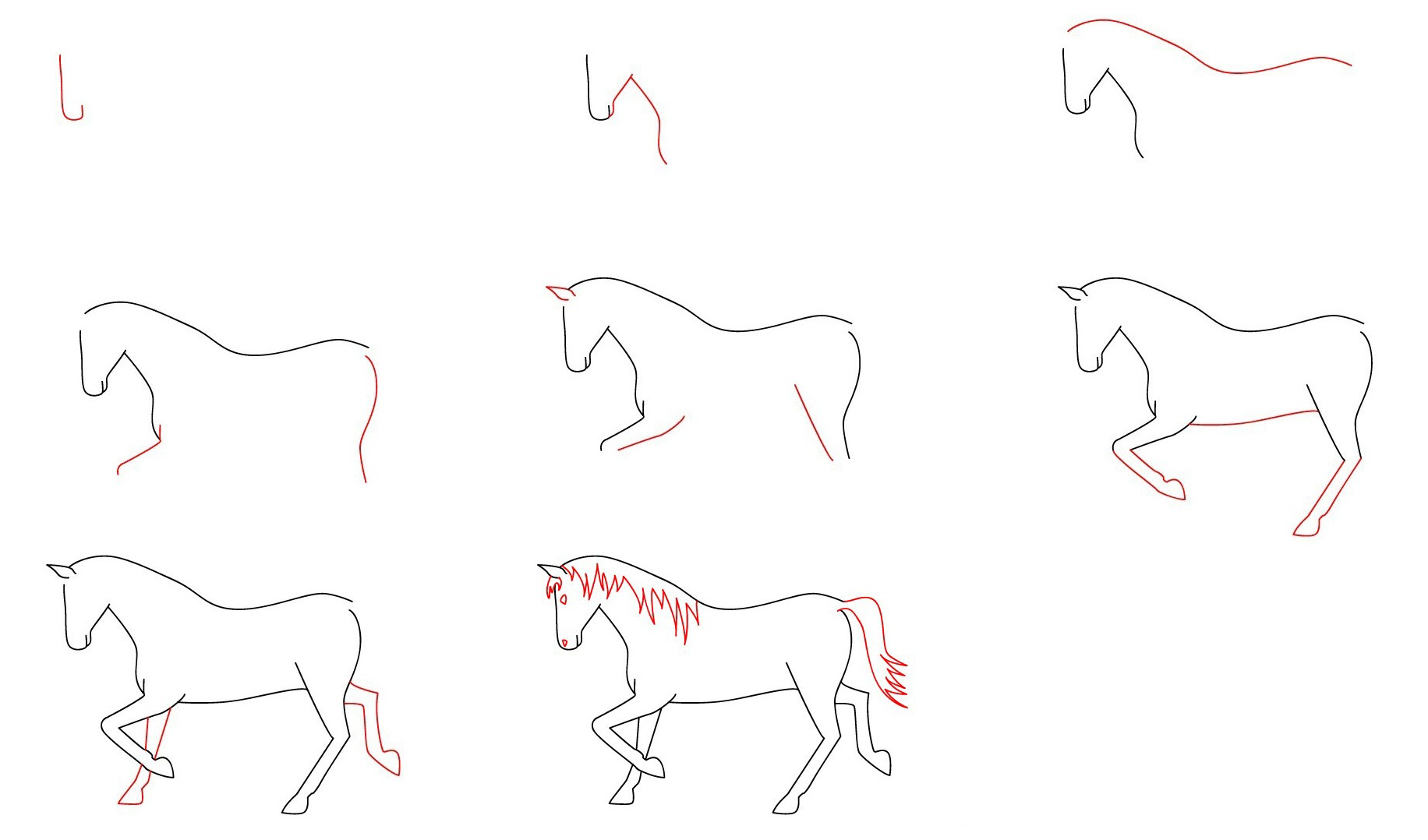 Как нарисовать лошадь для детей пошагово