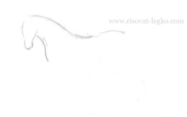 05.Как нарисовать лошадь поэтапно карандашом