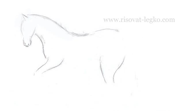 07.Как нарисовать лошадь поэтапно карандашом