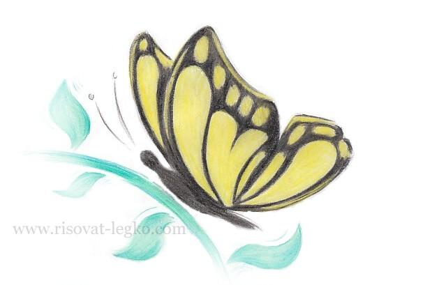 01.Как нарисовать бабочку поэтапно для начинающих