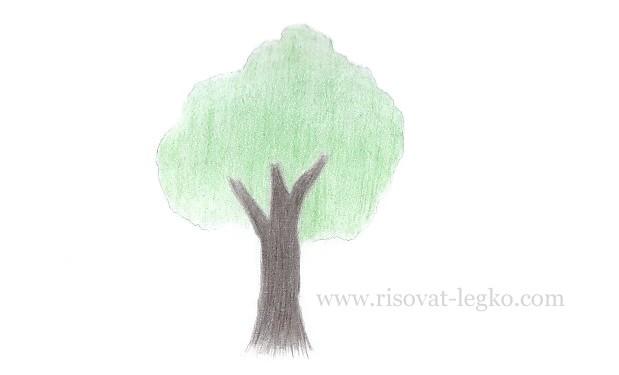 06.Как нарисовать дерево карандашом для начинающих