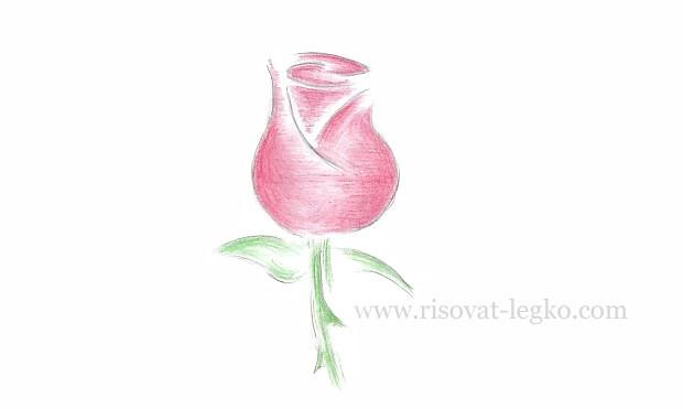 01.Как нарисовать розу поэтапно легко за 5 минут!