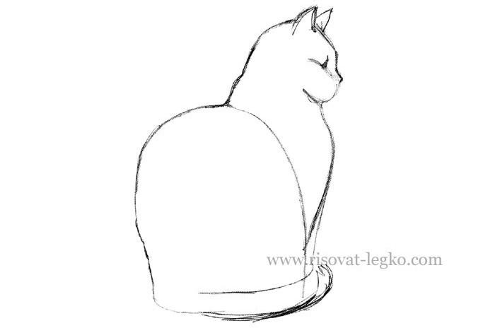 05.Как нарисовать кошку карандашом поэтапно