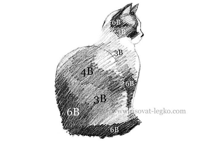 06.Как нарисовать кошку карандашом поэтапно