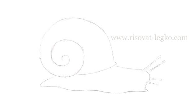 05.Как нарисовать улитку поэтапно карандашом