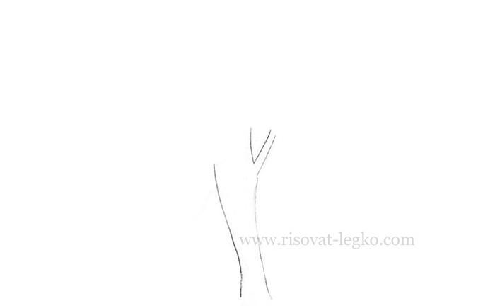 03.Нарисовать дерево поэтапно карандашом