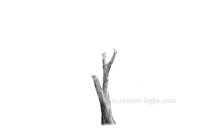 06.Нарисовать дерево поэтапно карандашом