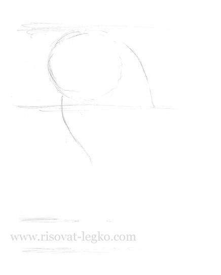 03.Как нарисовать кошку поэтапно карандашом красиво