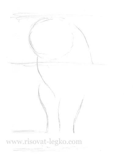 04.Как нарисовать кошку поэтапно карандашом красиво