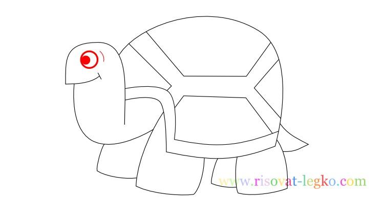 11.Поэтапное рисование для детей: рисуем черепаху