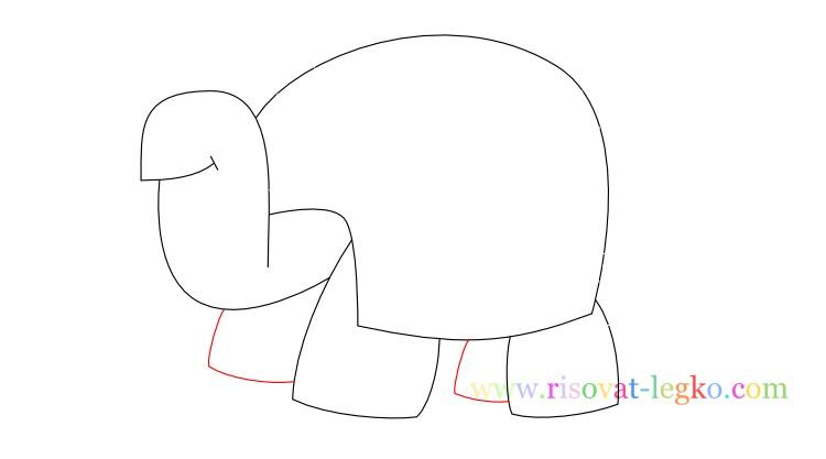 08.Поэтапное рисование для детей: рисуем черепаху