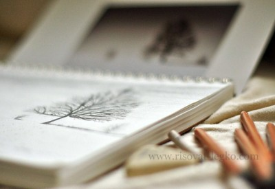 01.Учимся рисовать поэтапно карандашом: первые шаги