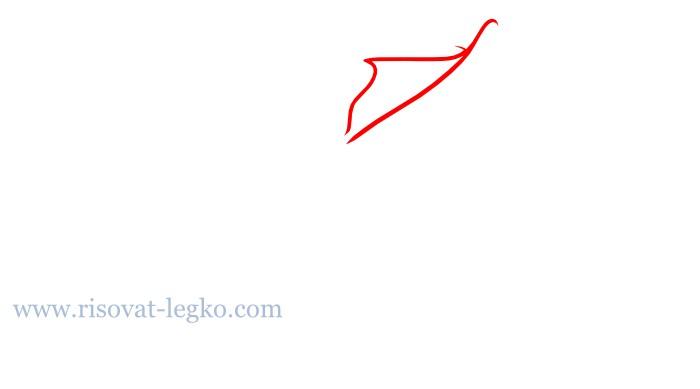 06.Цветы карандашом поэтапно: учимся рисовать цветы