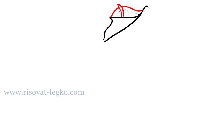 07.Цветы карандашом поэтапно: учимся рисовать цветы