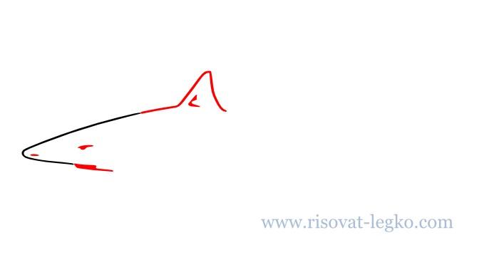 03.Как нарисовать акулу поэтапно для начинающих