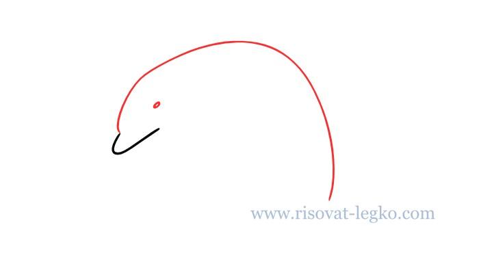 03.Как нарисовать дельфина поэтапно для начинающих