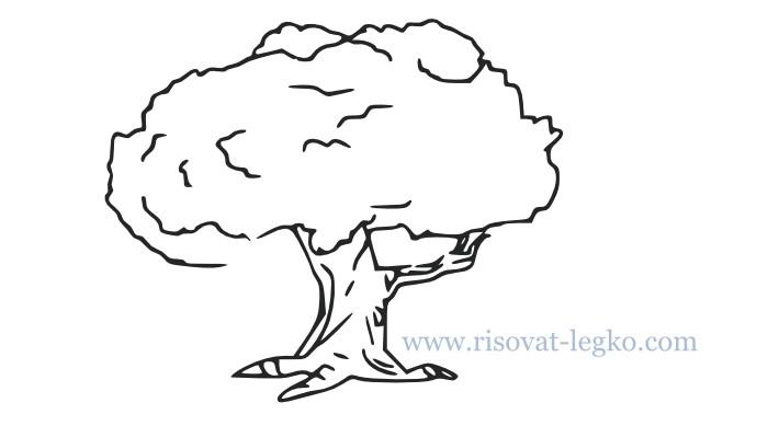01.Как нарисовать дерево поэтапно для начинающих