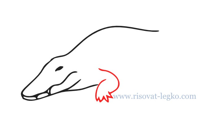 05.Как нарисовать крокодила поэтапно для начинающих