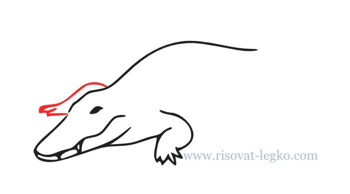 06.Как нарисовать крокодила поэтапно для начинающих