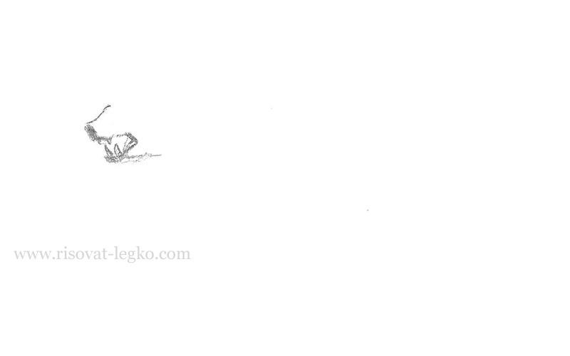 02.Как нарисовать медведя карандашом