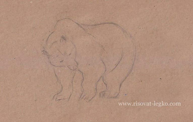 02.Как нарисовать медведя поэтапно карандашом