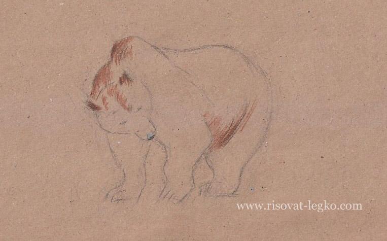 нарисовать медведя карандашом для детей