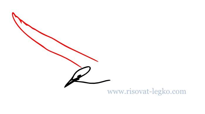 05.Как нарисовать поэтапно карандашом птицу новичку