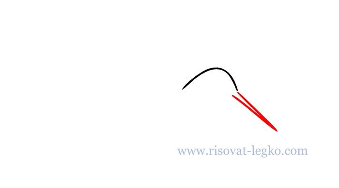 03.Как нарисовать поэтапно птицу для начинающих