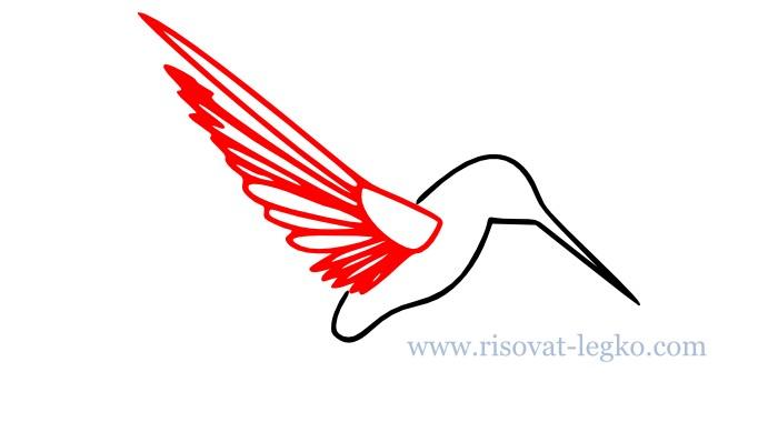 05.Как нарисовать поэтапно птицу для начинающих