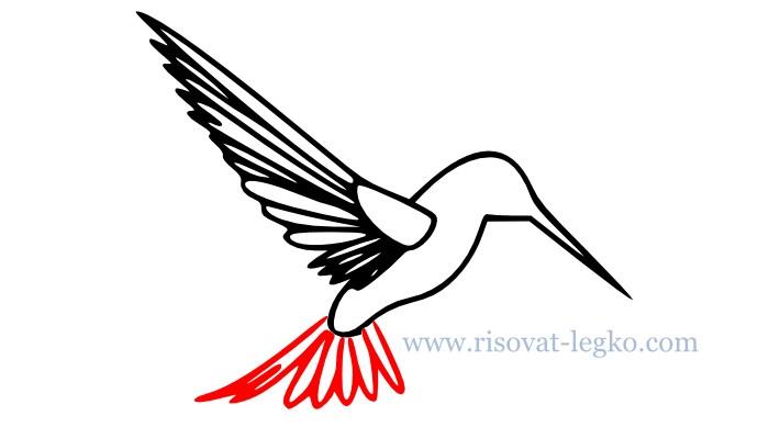 06.Как нарисовать поэтапно птицу для начинающих