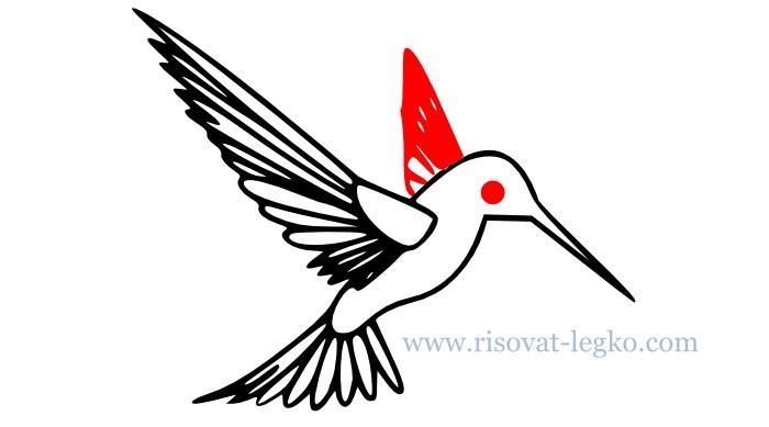 07.Как нарисовать поэтапно птицу для начинающих