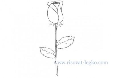 01.Как нарисовать розу карандашом