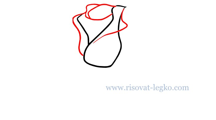 03.Как нарисовать розу карандашом поэтапно